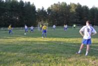 Мяч в игре