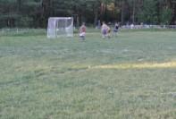 Игра соперников. Мяч в воротах.