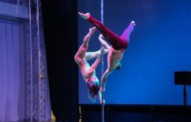 Гимнасты на пилоне